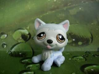 LITTLEST PET SHOP Blue Husky Dog #1046