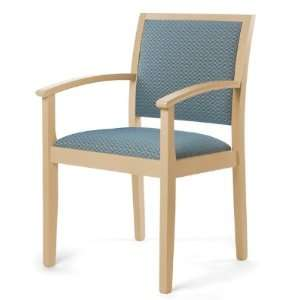 SN410, Healthcare Medical Guest Lounge Arm Chair