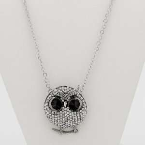 Jewelry Silvertone Metal Crystal Owl Pendant and Chain Jewelry
