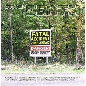 Fatal Accident Zone: Sudden Death: Music