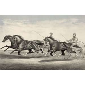Trotting Ethan Allen and Mate and Dexter Vintage Image Home & Kitchen