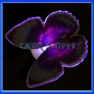 description brand new and high quality fiber butterfly led light the