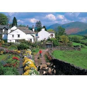 Lake District Jigsaw Puzzle   1000PC Toys & Games