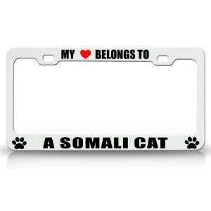MY HEART BELONGS TO A SOMALI Cat Pet Auto License Plate