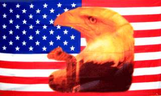 Patriotic USA Eagle with Tear 3x5 American Flag Banner