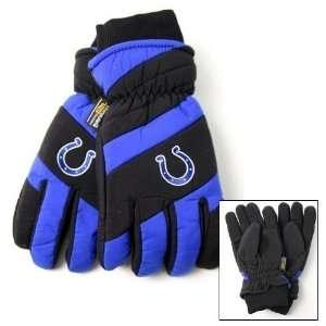 Nylon Shell Thinsulate Lined Ski Gloves Size L/XL