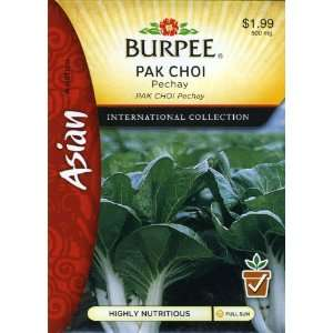 Burpee 69629 Asian   Cabbage, Chinese Pack Choi, Pechay