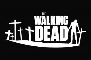 The Walking Dead Zombie Die Cut Decal Vinyl Sticker   6.75