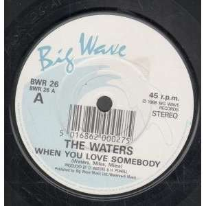 WHEN YOU LOVE SOMEBODY 7 INCH (7 VINYL 45) UK BIG WAVE