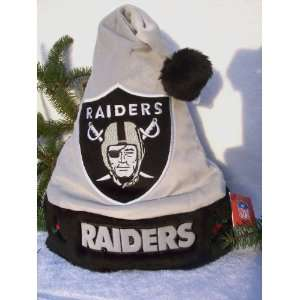 plush holly NFL Solid color Team logo Santa Hat