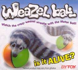 24 WHOLESALE Alive? Weasel Weazel Ball Pet Cat Dog Toy 0051363803784
