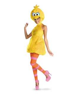 Womens Sesame Street Big Bird Costume  Womens TV and Movie Halloween