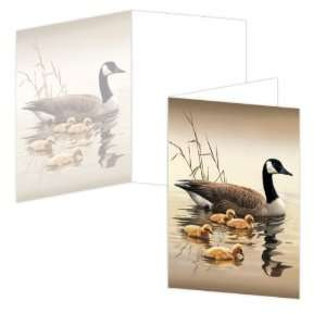 ECOeverywhere Canada Geese Boxed Card Set, 12 Cards and
