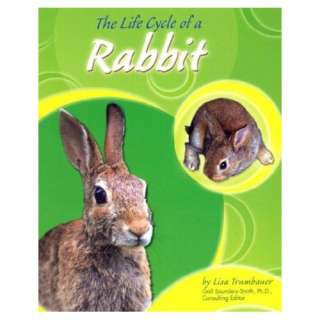 The Life Cycle of a Rabbit (Life Cycles (Peeble Books