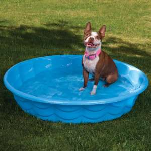 Summer Escapes Poly Pool Pet Bath   Travel Essentials   Dog