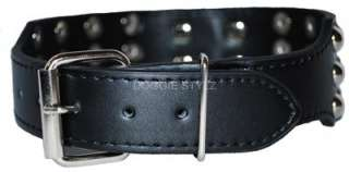 Black Leather Dog Collar Silver Studs Dane Malamute Akita Pitbull Rott