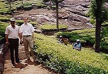 Michael Brehme, co founder of Clipper Teas, with tea estate manager